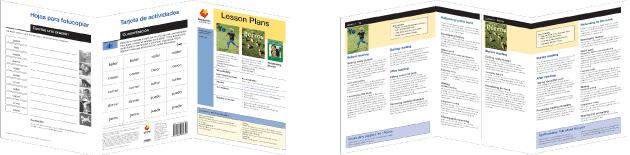 Desp_lesson_plans